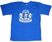 печать футболок шелкография логотипа